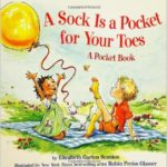 A SOCK IS A POCKET FOR YOUR TOES cover